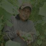 กรมวิชาการเกษตรเสนอเลิกนำเข้าสารเคมีอันตราย 4 ชนิด